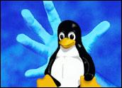 el pingüino